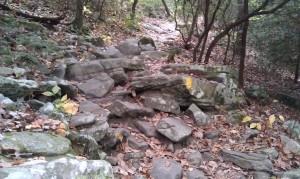 Cloudland Canyon's rocky terrain